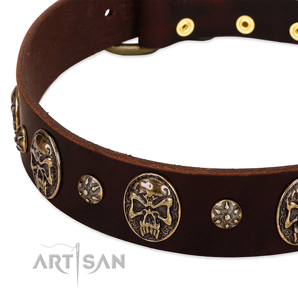 Corrosion proof adornments on genuine leather dog collar for your four-legged friend