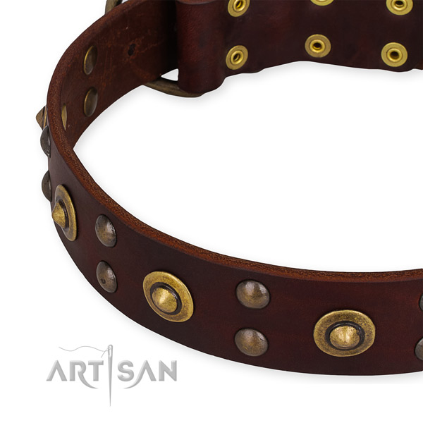 Genuine leather collar with rust resistant fittings for your impressive doggie