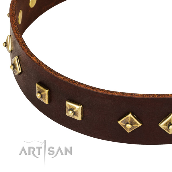 Unique full grain leather collar for your impressive doggie