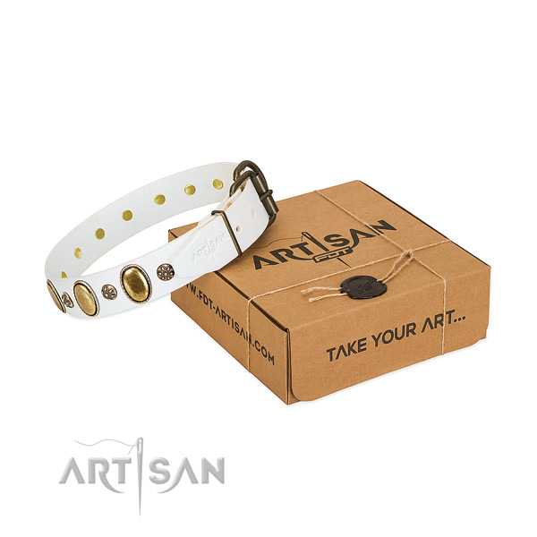 Handy use flexible leather dog collar with studs