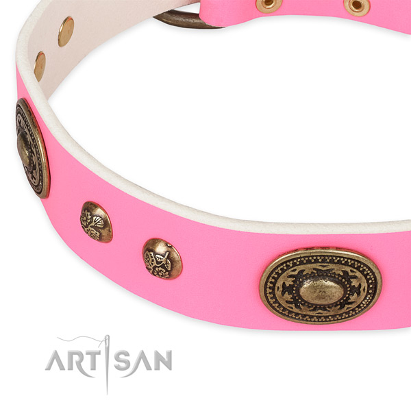 Extraordinary leather collar for your attractive pet