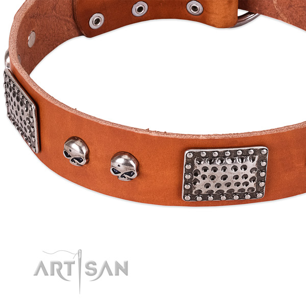 Strong studs on natural genuine leather dog collar for your canine