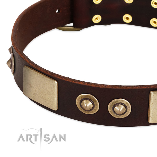 Strong D-ring on genuine leather dog collar for your dog