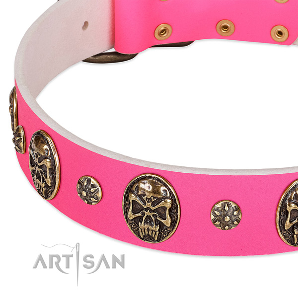 Adjustable dog collar made for your stylish pet
