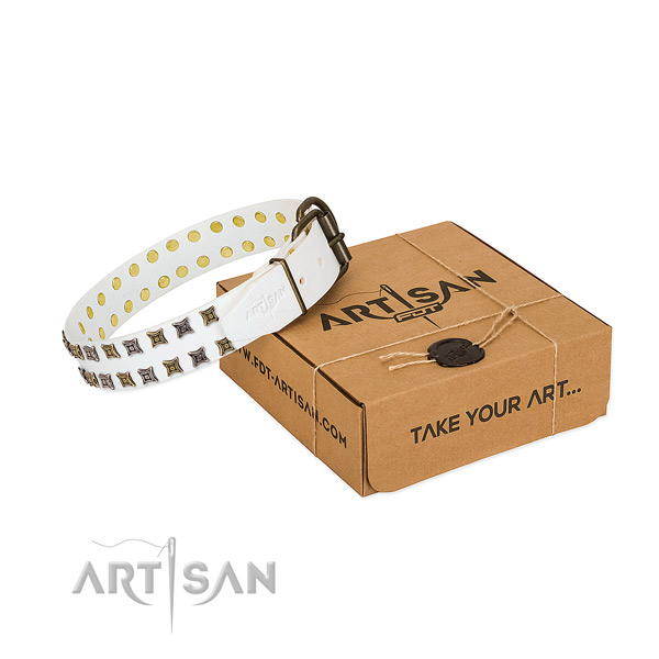 Natural leather collar with incredible adornments for your pet
