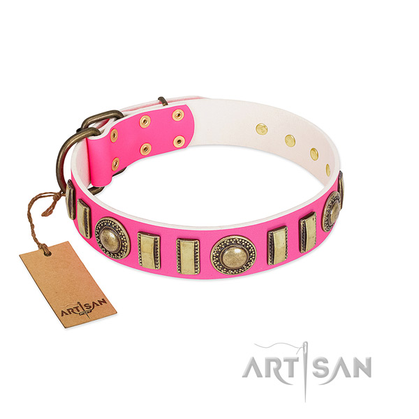 Embellished full grain leather dog collar with corrosion proof D-ring