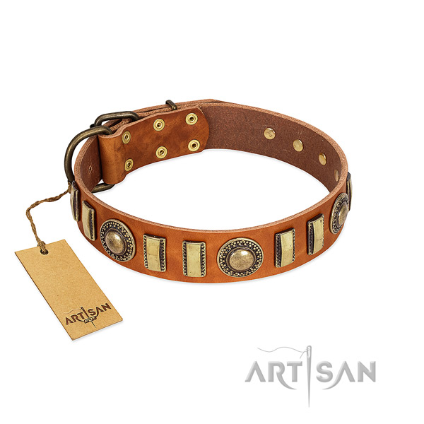 Adjustable full grain leather dog collar with rust resistant D-ring