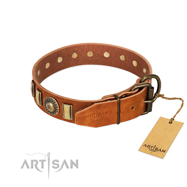 Adorned genuine leather dog collar with strong fittings