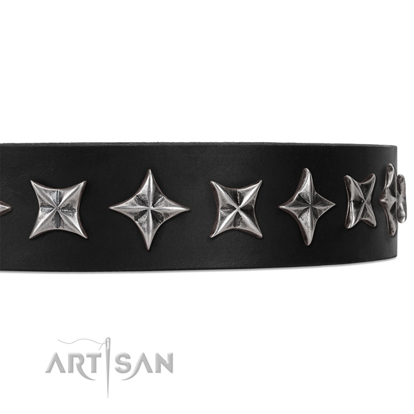 Stylish walking studded dog collar of reliable natural leather