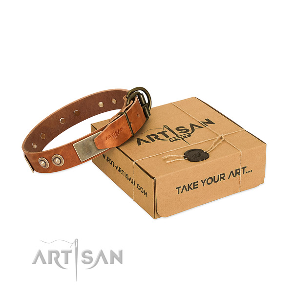 Rust-proof buckle on dog collar for handy use