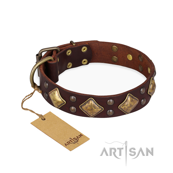 Handy use best quality dog collar with corrosion proof buckle