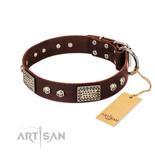 Easy adjustable genuine leather dog collar for everyday walking your pet