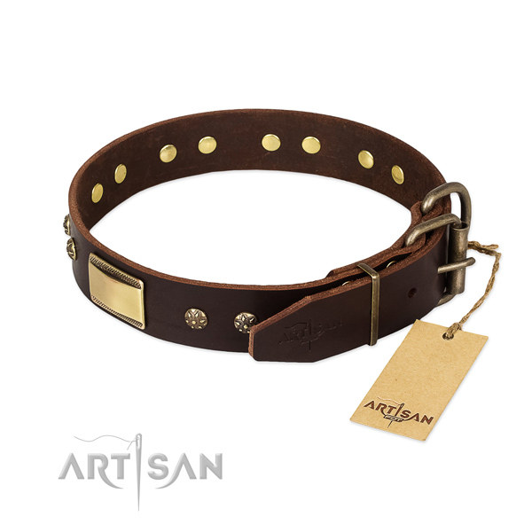 Best quality leather collar for your pet