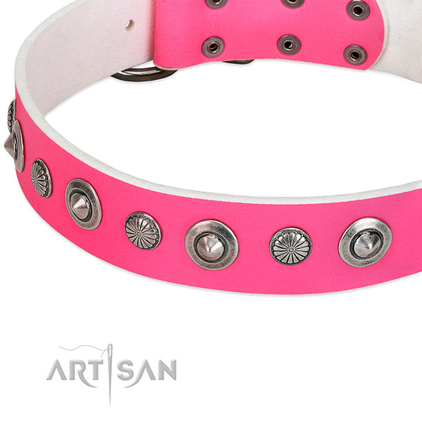 Full grain natural leather collar with rust-proof D-ring for your attractive pet