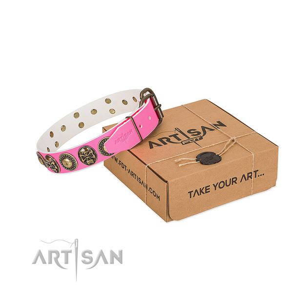 Reliable hardware on dog collar for easy wearing