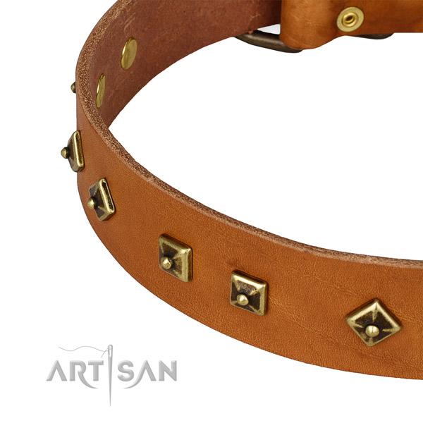 Adorned full grain genuine leather collar for your attractive four-legged friend