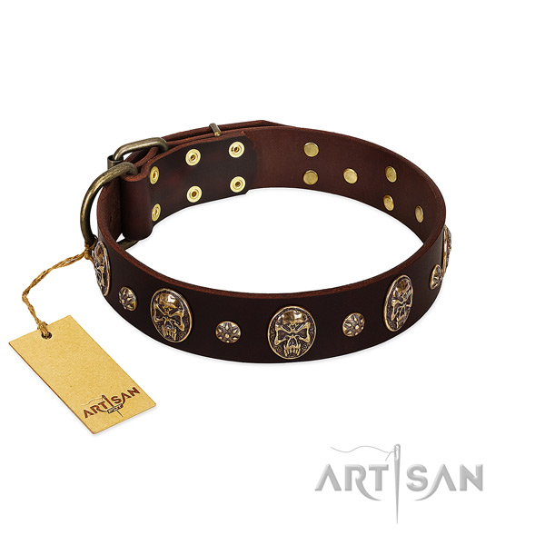 Incredible full grain natural leather collar for your canine