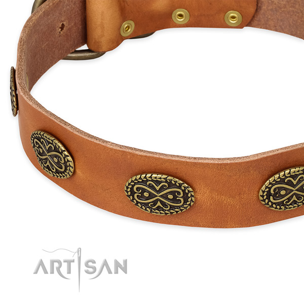 Top notch genuine leather collar for your stylish pet