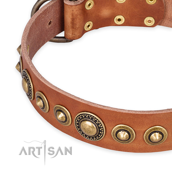 Flexible full grain leather dog collar handcrafted for your handsome pet
