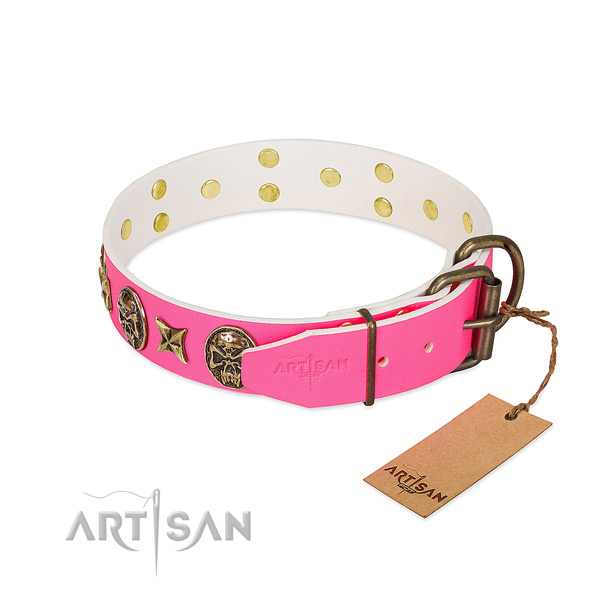 Reliable buckle on full grain leather collar for everyday walking your canine