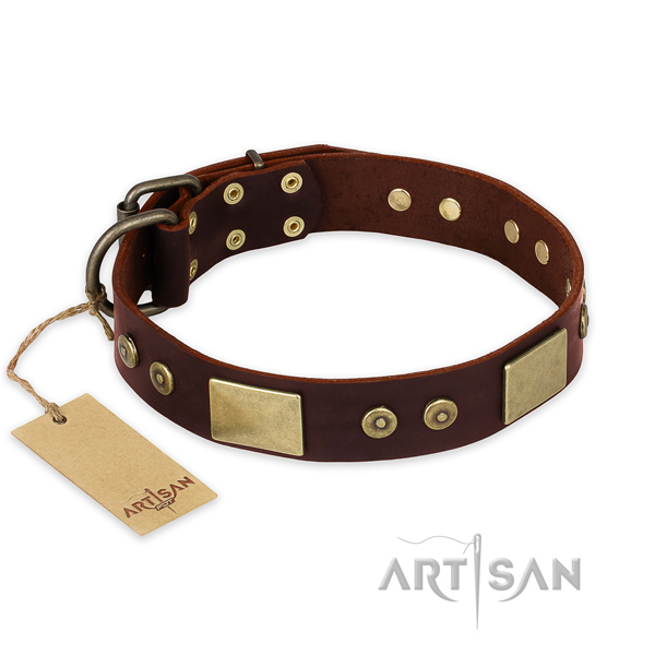 Exceptional leather dog collar for handy use