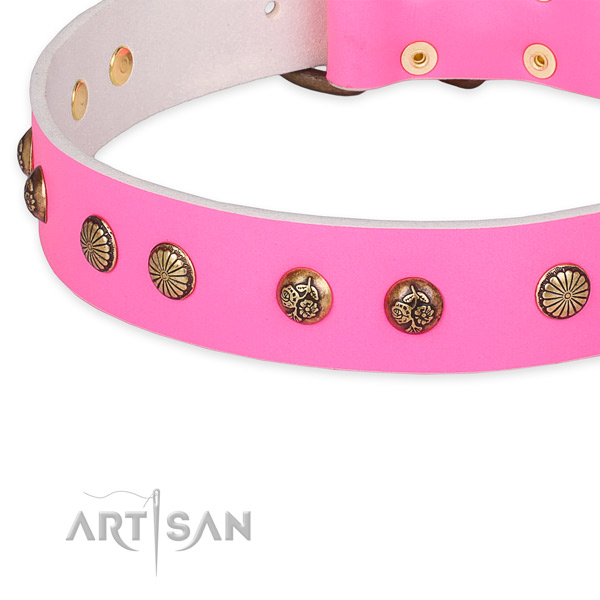 Perfect fit leather collar for your attractive four-legged friend
