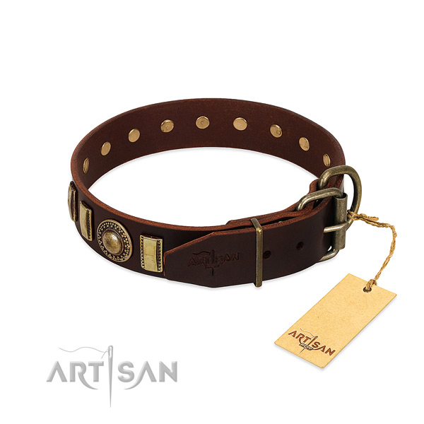 Significant leather dog collar with rust-proof hardware