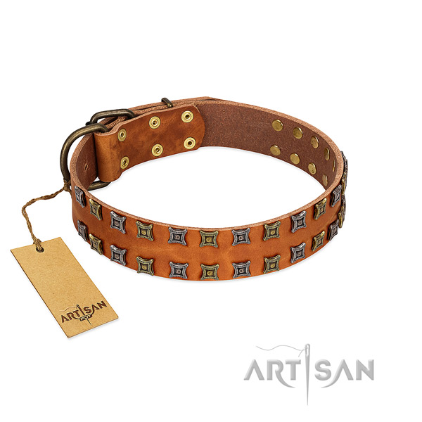 Flexible genuine leather dog collar with studs for your pet