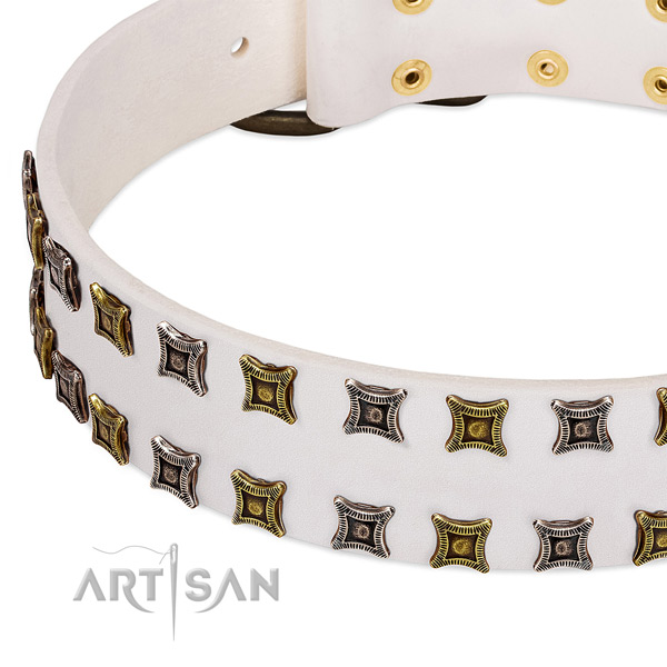 Full grain leather dog collar with embellishments for your beautiful dog