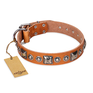 """Era of Future"" FDT Artisan Handcrafted Tan Leather dog Collar with Decorations"