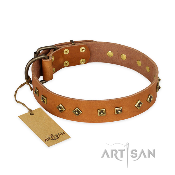 Decorated natural leather dog collar with durable hardware