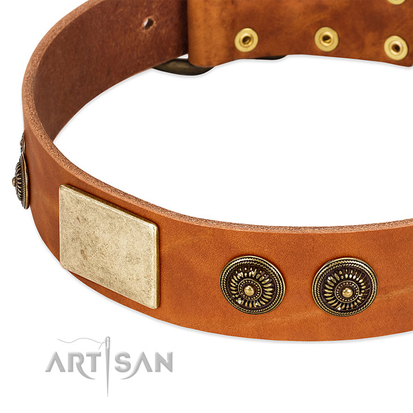 Fine quality dog collar created for your attractive dog