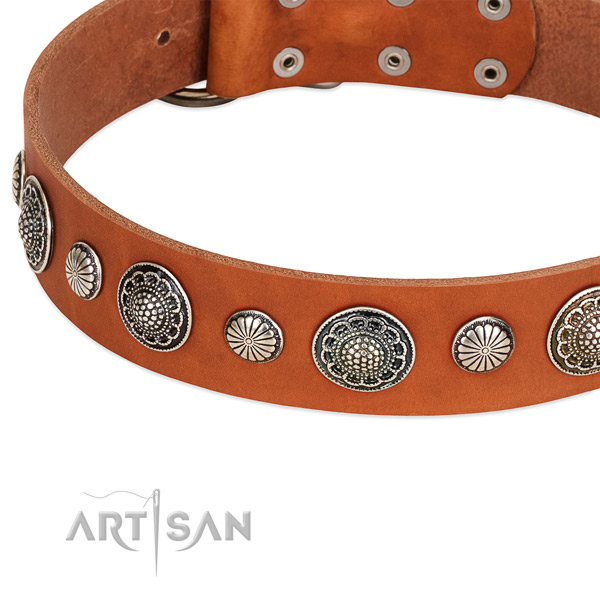Full grain genuine leather collar with corrosion resistant fittings for your impressive four-legged friend