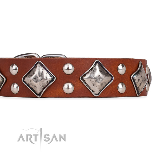 Full grain genuine leather dog collar with amazing strong decorations