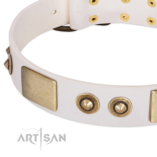 Durable decorations on full grain natural leather dog collar for your dog
