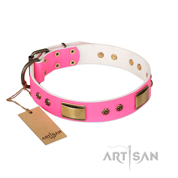 Stunning full grain natural leather collar for your dog