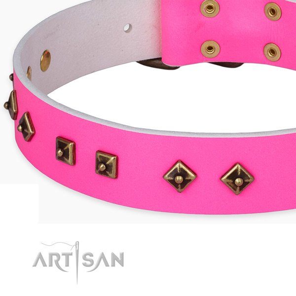 Easy to adjust full grain leather collar for your attractive four-legged friend