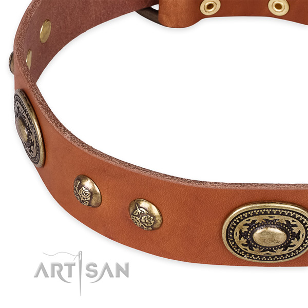 Handcrafted genuine leather collar for your beautiful canine