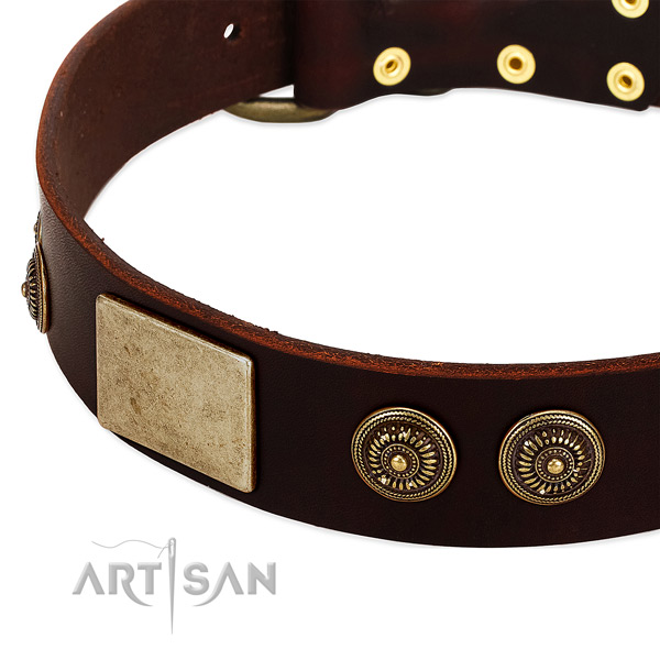 Corrosion resistant traditional buckle on full grain genuine leather dog collar for your doggie