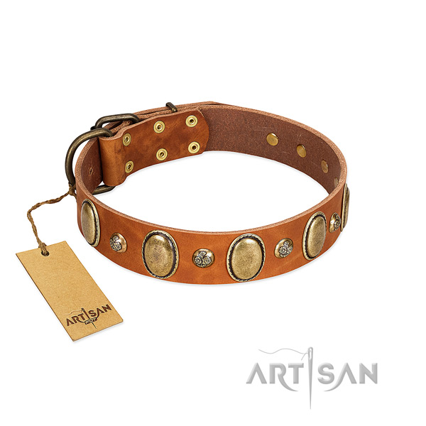 Full grain genuine leather dog collar of reliable material with awesome adornments