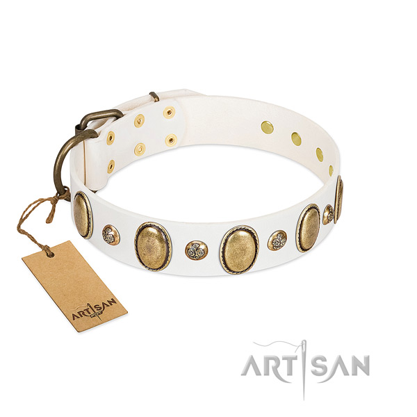 Natural leather dog collar of soft material with awesome decorations