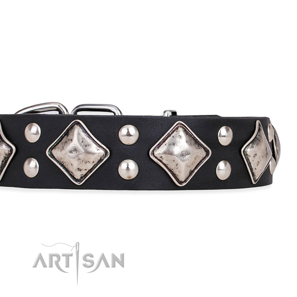 Full grain genuine leather dog collar with top notch durable embellishments