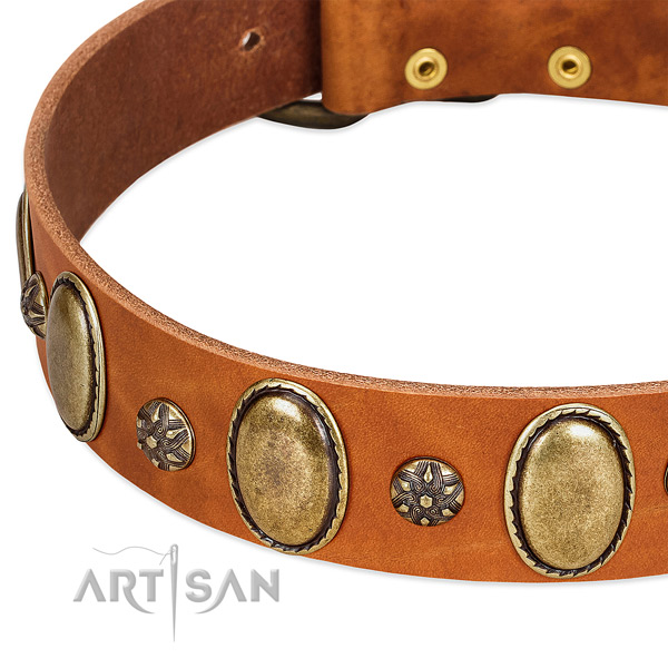 Stylish walking top notch full grain genuine leather dog collar