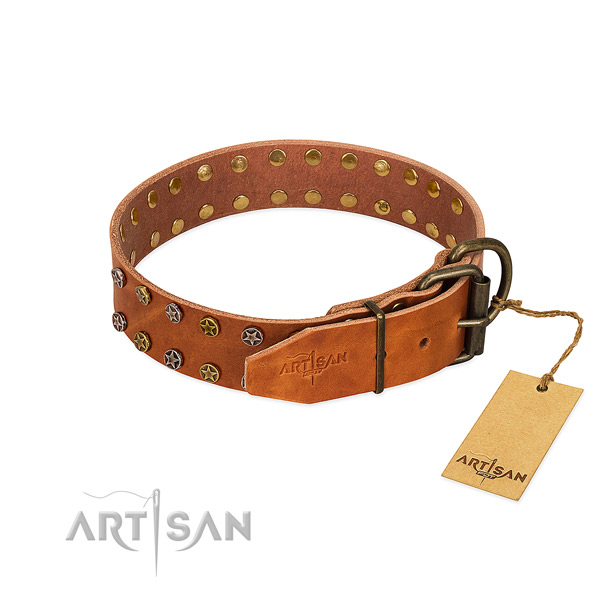 Handy use full grain natural leather dog collar with remarkable embellishments