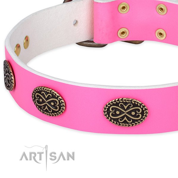 Leather dog collar with studs for handy use