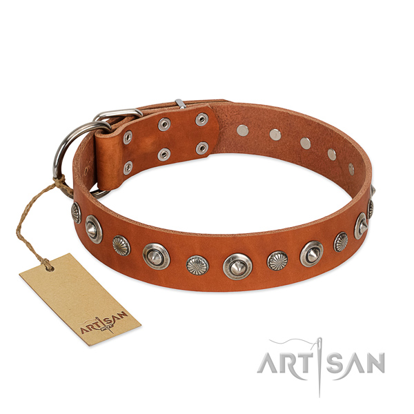 Reliable natural leather dog collar with inimitable decorations