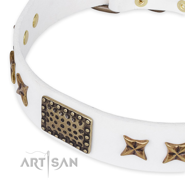 Genuine leather collar with durable buckle for your beautiful pet