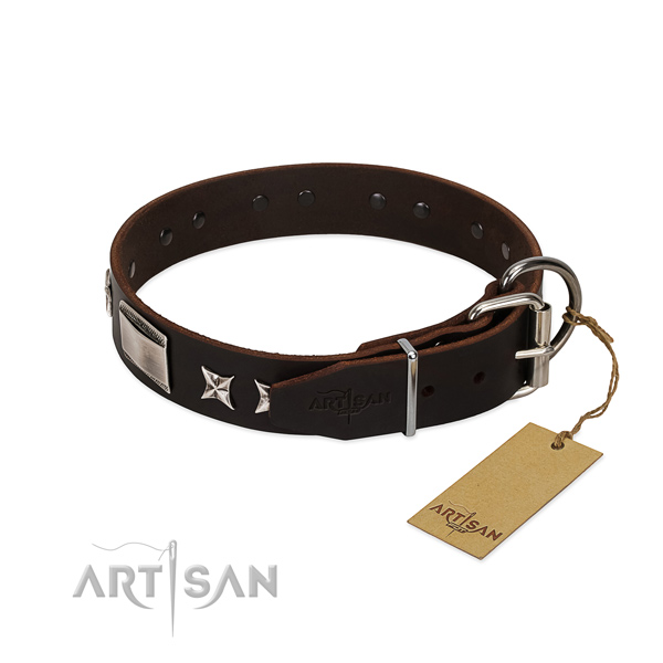 Extraordinary collar of full grain natural leather for your stylish pet