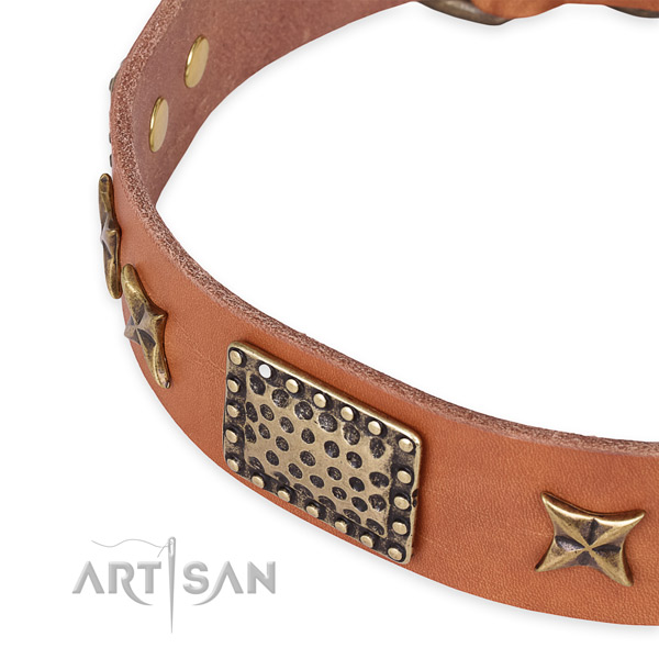 Full grain genuine leather collar with durable hardware for your attractive pet