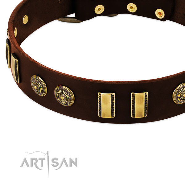 Reliable fittings on natural leather dog collar for your dog